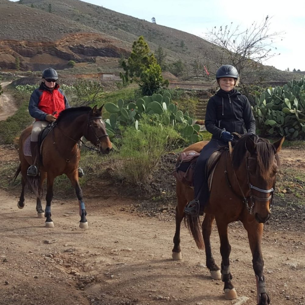 Horse riding excursions in Tenerife