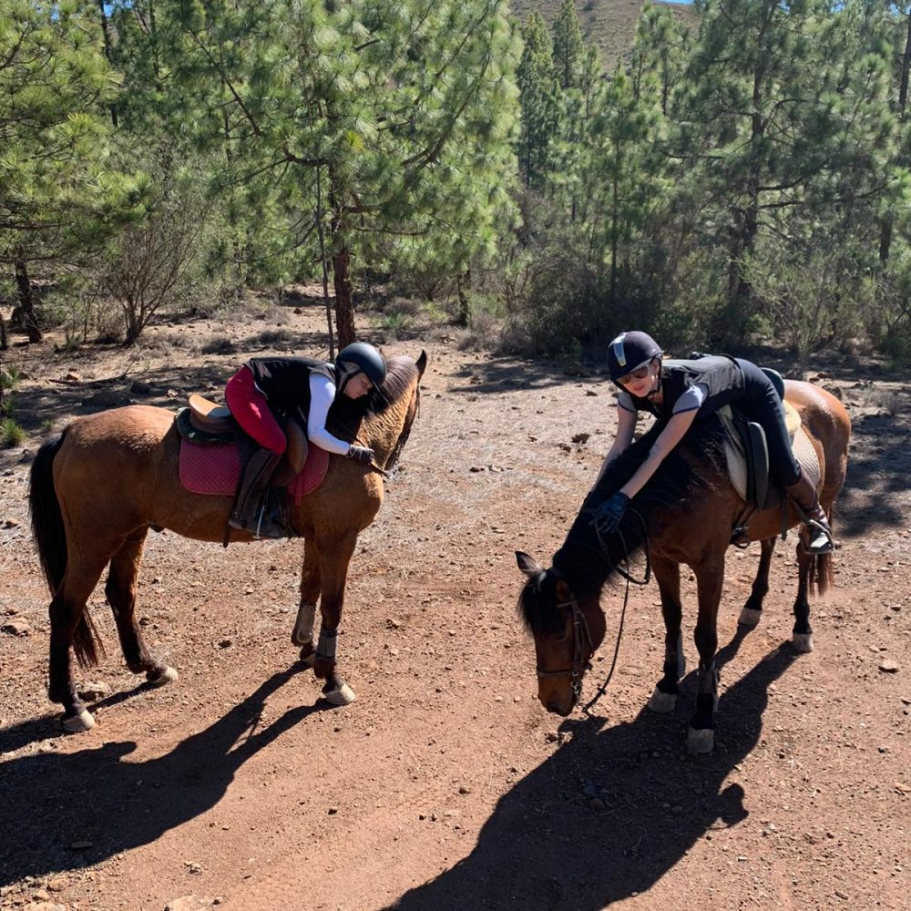 Horse riding treks in Tenerife